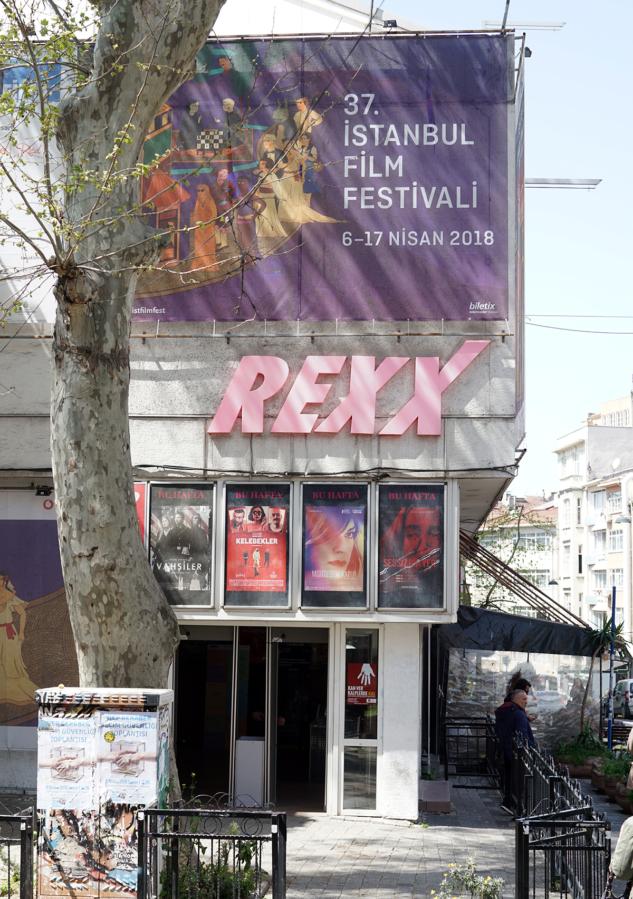Rexx Sinemasi Giris