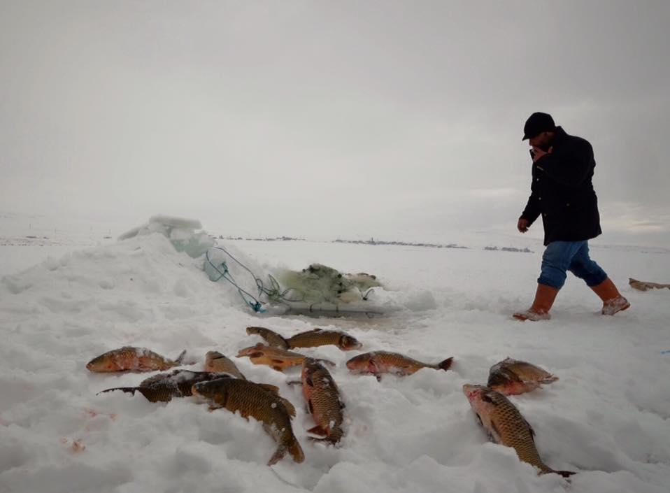 Çıldır Gölü – Balıkçı