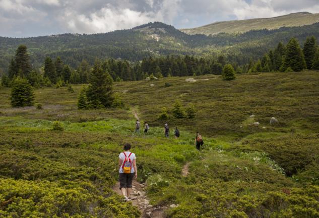 Uludağ'da Kamp Alanları: Softaboğan, Tuzaklı ve Sarıalan