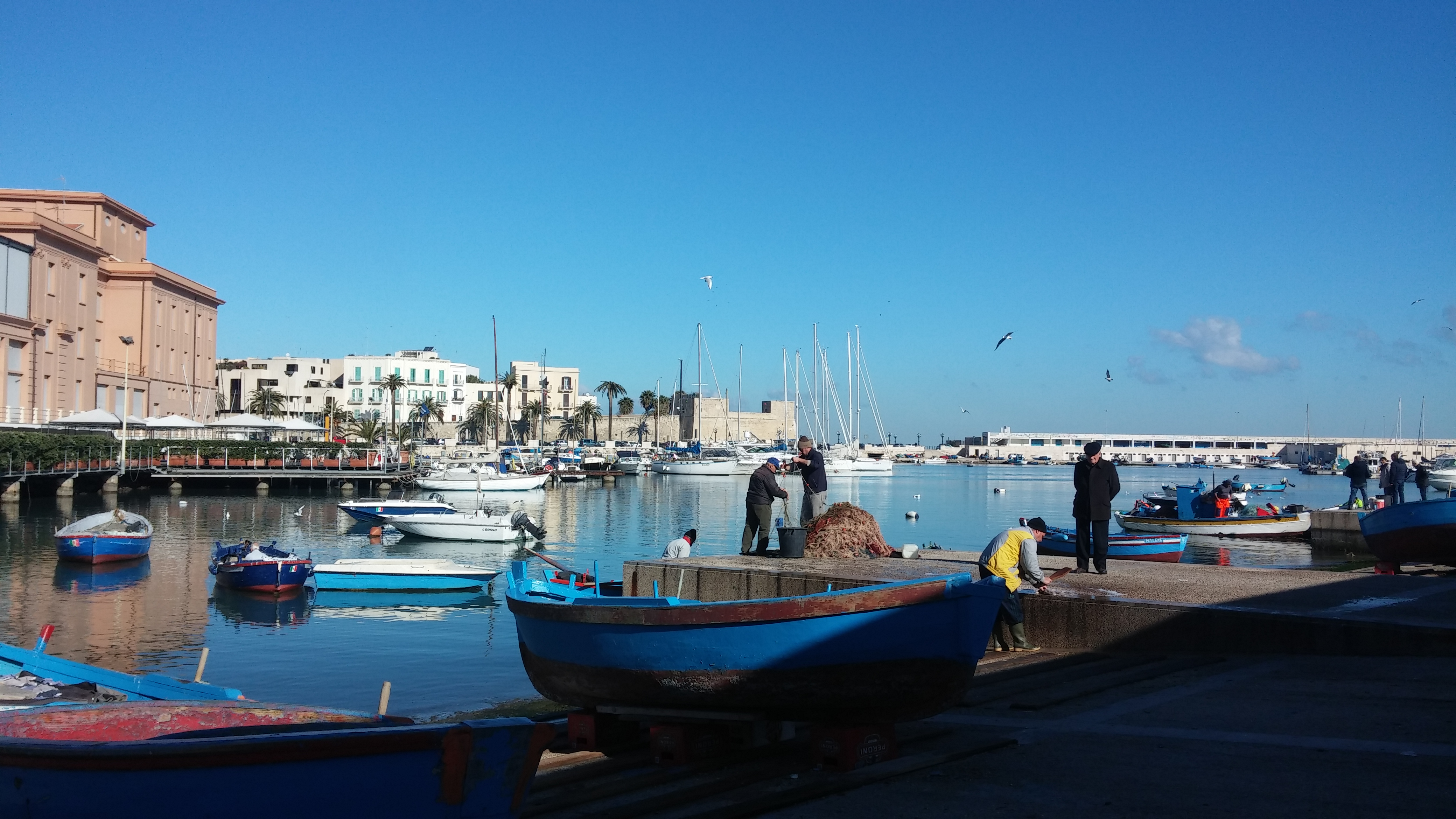 Bari Liman