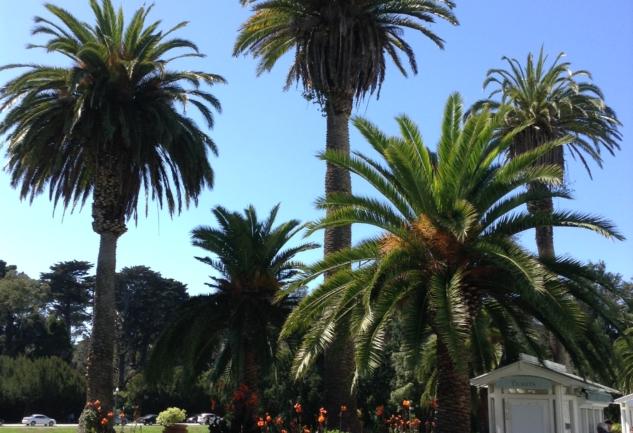 Ne de Güzel Parklar Var!