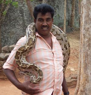 Sri Lanka: Görme Duyunuzu Yeniden Keşfedin!