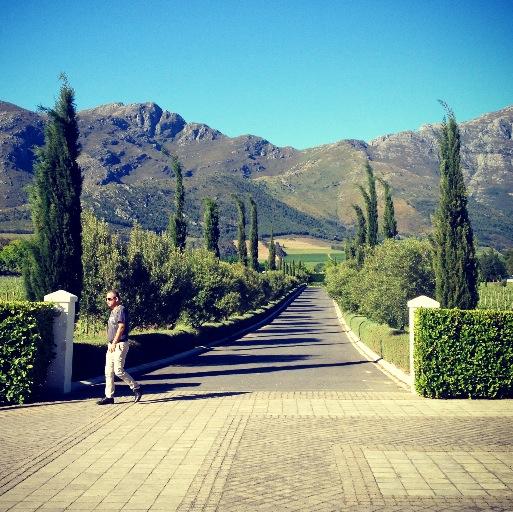Güney Afrika Bağları