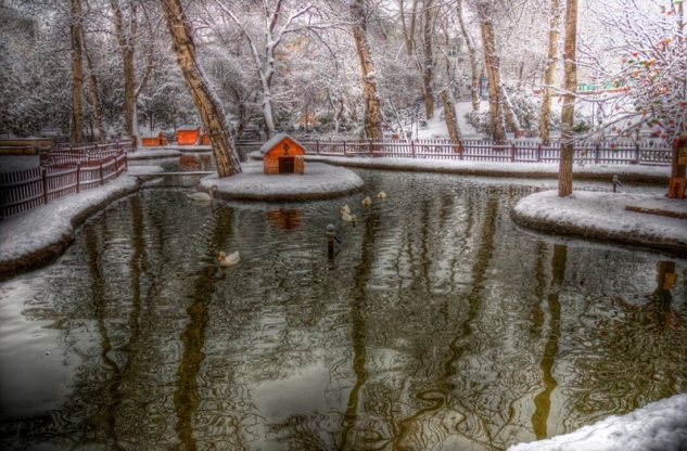 Kuğulu park 2