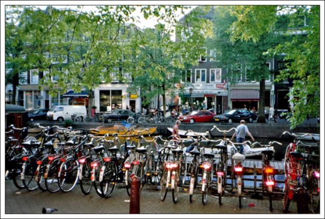 amsterdam – bisikletler