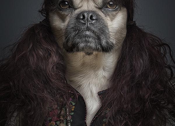 Köpekler Sahiplerine Benzer: Sebastian Magnani'den