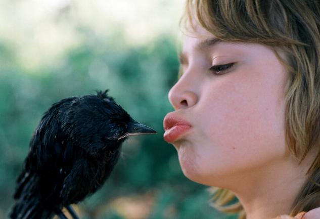 Turuncu Sinema: En İyi Hollanda Filmleri