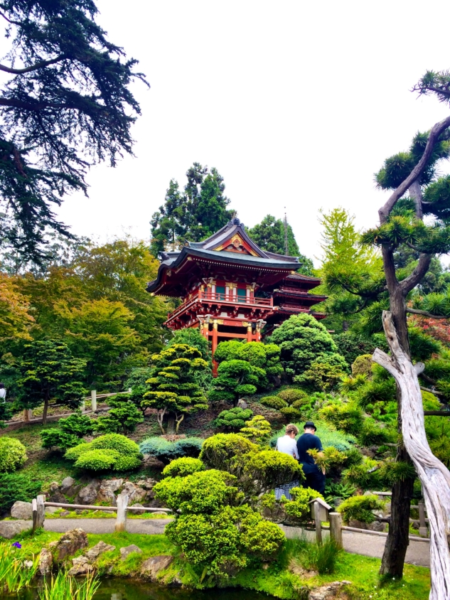 san francisco – japanese tea garden
