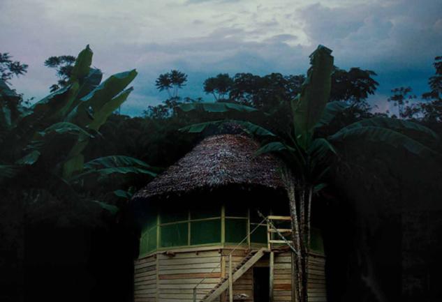 Amazon'da Şamanlar ile Alternatif Tıp: The Sacred Science