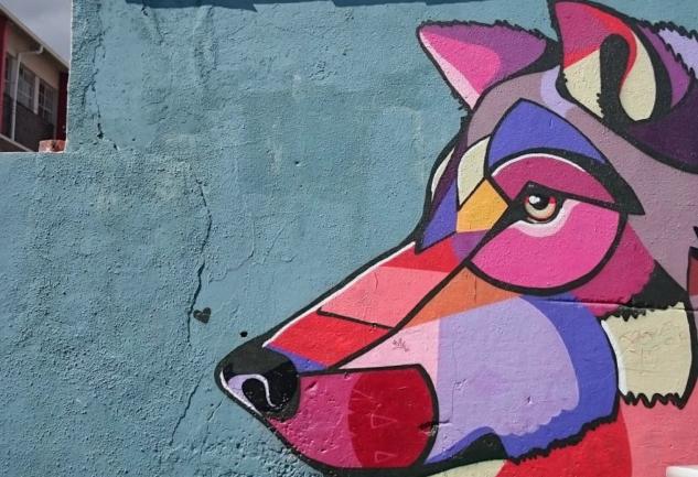 Woodstock'un Tehlikeli Sokaklarında: Cape Town Sokak Sanatı Turu
