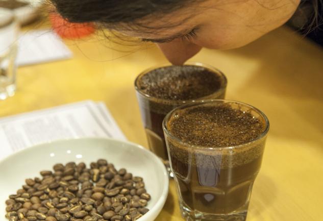 Sihirli Meyve: Kahve Kokusunun Peşinde