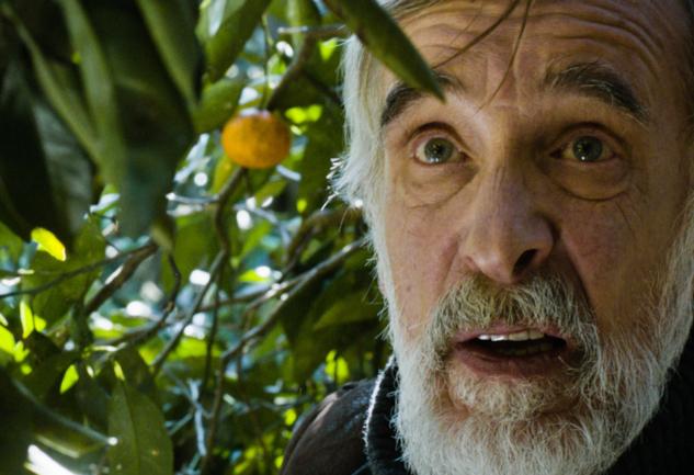 Mandariinid / Tangerines: Sıcacık Bir Savaş Eleştirisi