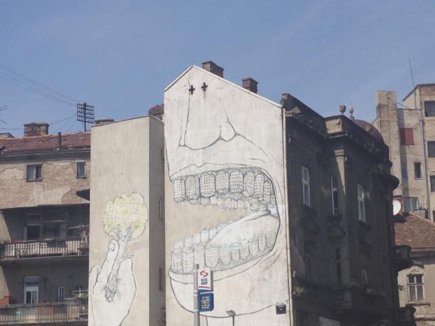 belgrad 11