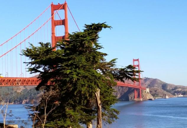 Muhteşem Şehir: San Francisco