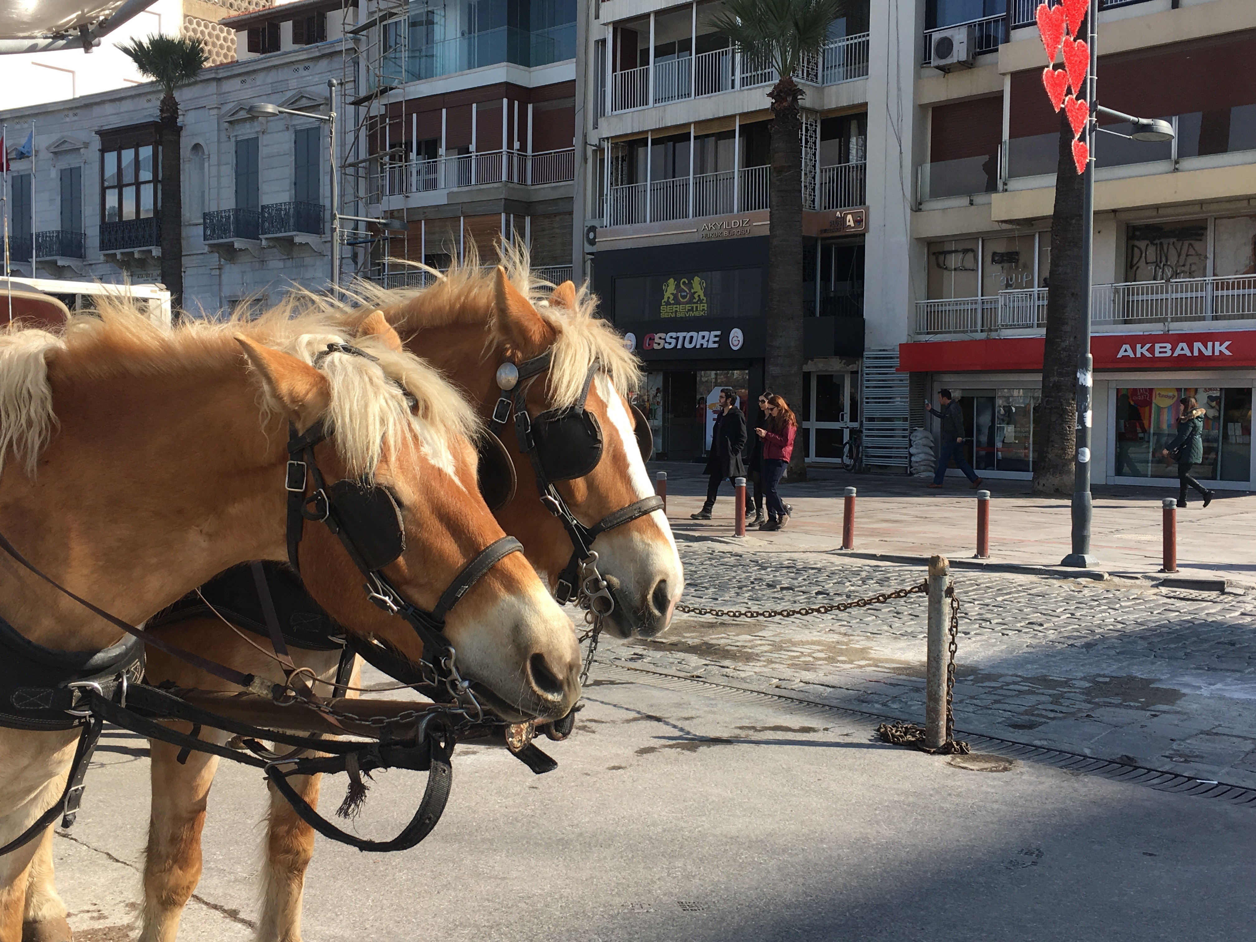 İzmir'de Bahar Gibi Üç Gün
