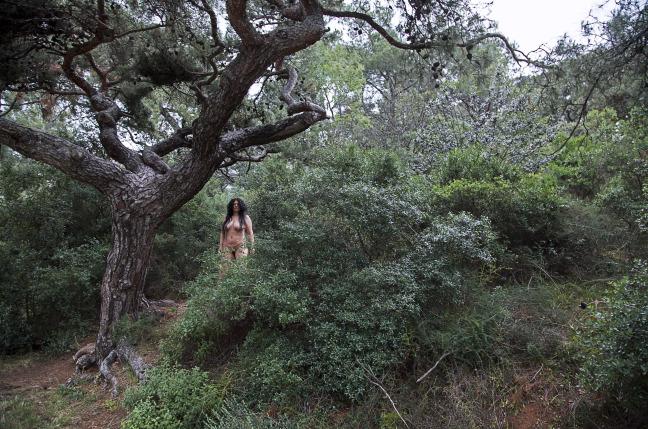 canan-uzak-orman-yakin-sehir