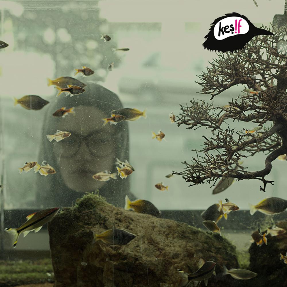 Keş!f Zamanı: Paradise