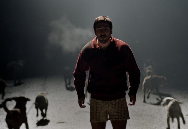 48. SİYAD Ödülleri'nde Öne Çıkan 10 Film