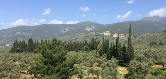 01 Kaz-Daglari-Mount-Ida