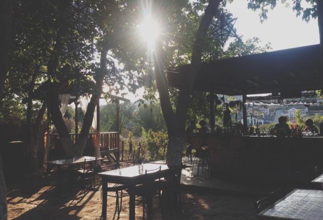 Ahali 279: Zekeriyaköy'ün Gizli Kalmış Bahçesi