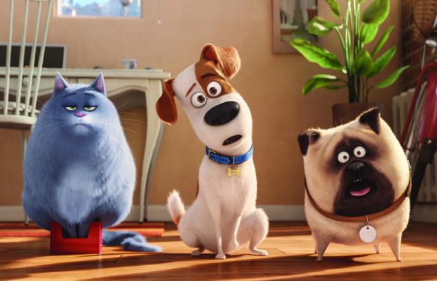 En İyi Hayvan Filmleri: Köpek ve Kediseverler Mutlaka İzlemeli