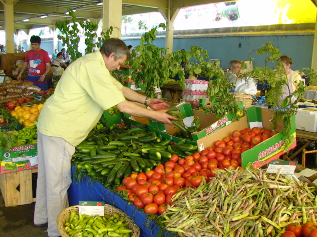 pazarlar – ferikoy organik