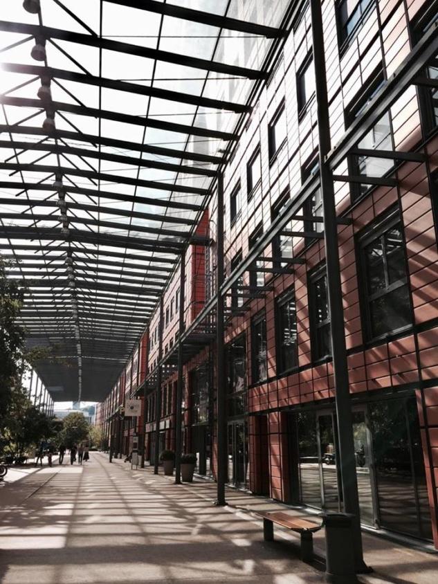 Renzo Piano, Cité Internationale