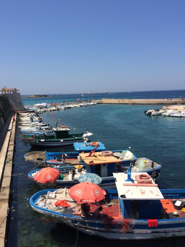 Gallipoli2