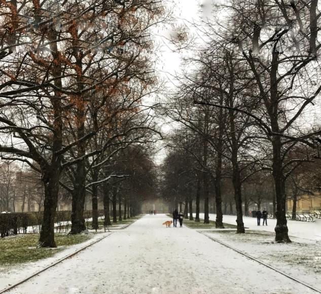 Münih Parkları