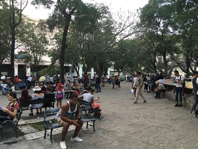 Parklar, internet kullanmaya gelen insanlarla dolu