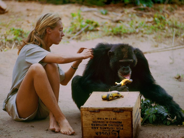 Jane   National Geographic