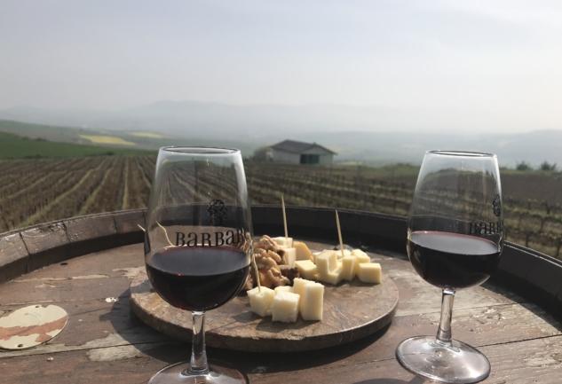 Barbaros Bağ Evi: Trakya'da Hafta Sonu Şarap Kaçamağı