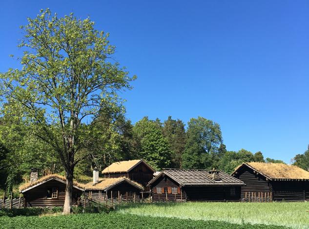 Norway Cultural Museum-Norvec Evleri