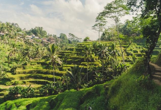 Bali Spirit: Seminyak ve Ubud'da 9 Gece