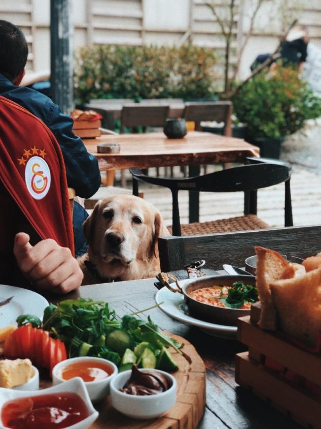 Rocco manzaralı kahvaltımız