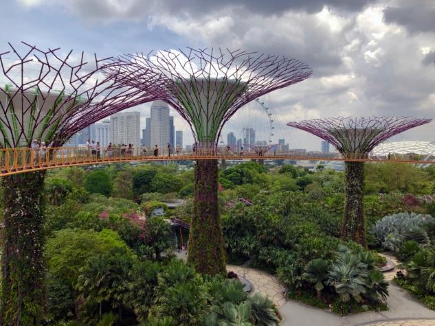 Nick Fewings – Singapur