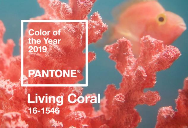 pantone yılın rengi – 2019