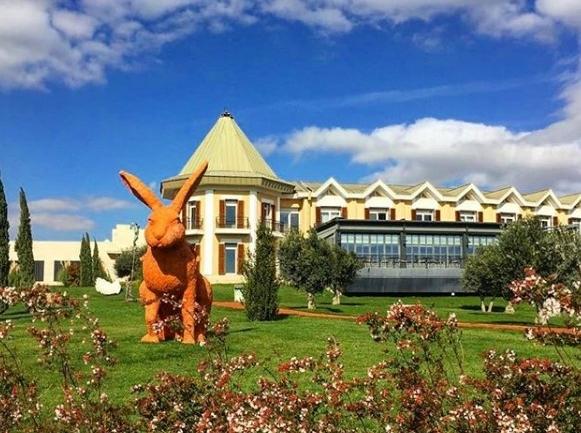 Porta Caeli: Eceabat'ta Şarap Severler İçin Bir Harikalar Diyarı