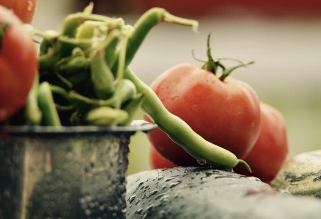 Slow Food Hareketi: Önce Ruhunuz, Sonra Karnınız Doysun