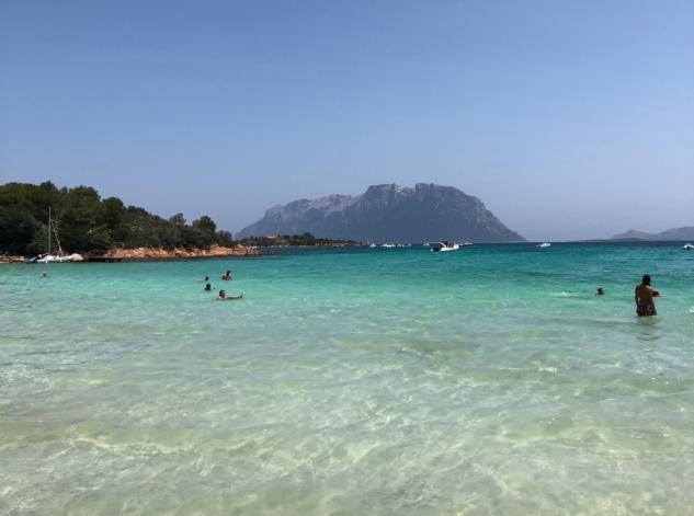 Sardinya Deniz