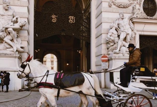 Viyana Rehberi: Buram Buram Tarih Kokan Şehir
