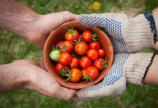 Farkındalığımızı Arttıralım: Tükettiklerimiz ve Mevsimsellik
