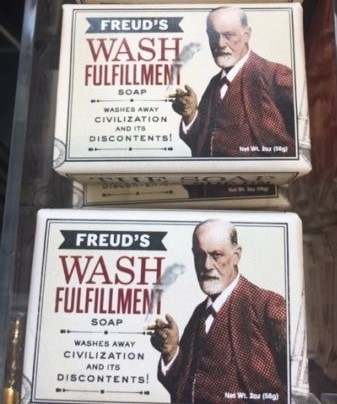 Freud ve Viyana