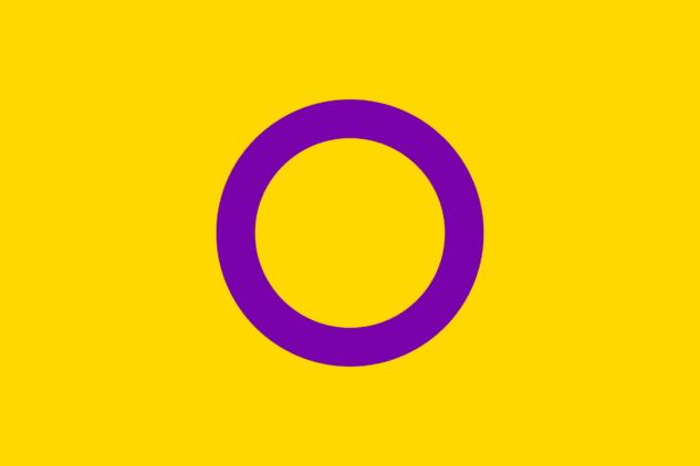 gökkuşağı bayrağı – intersex pride