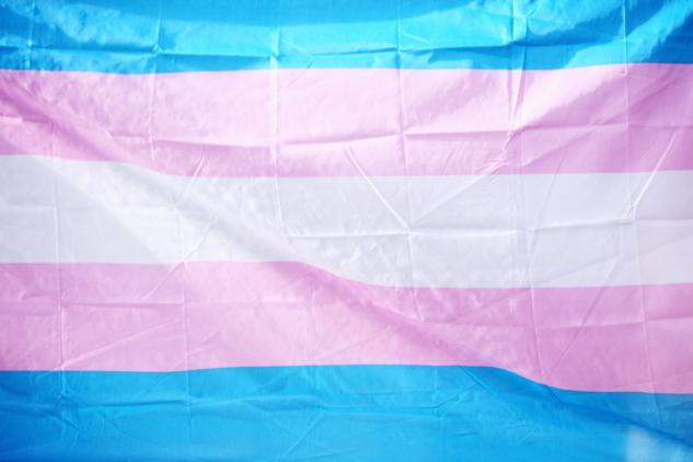 gökkuşağı bayrağı – trans pride – sharon-mccutcheon