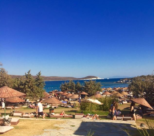Plaj İzlole