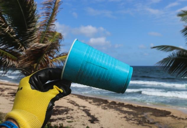 Dünya Temizlik Günü: Gezegeni Birlikte Kurtarıyoruz!