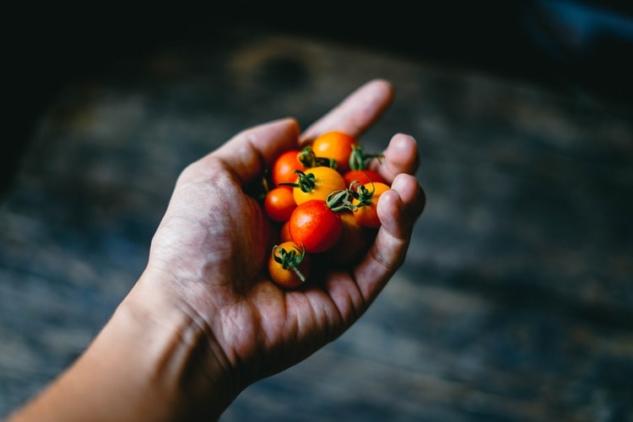 Dünya Gıda Günü | Fotoğraf: Unsplash / Chinh Le Duc