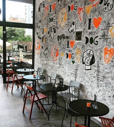 Jack's Dog Cafe: Kadıköy'ün Sevimli Dostunuza Özel Mekanı
