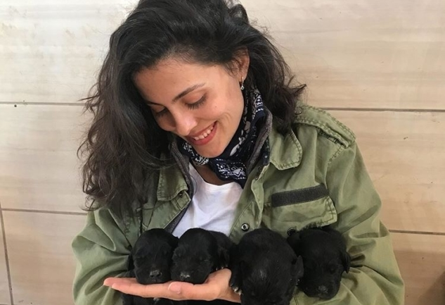 Türkan Ceylan: Barınak Meleği ile Minik Dostlarımız Üzerine